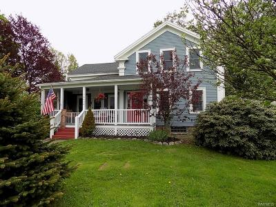 Erie County Single Family Home A-Active: 12030 Savage Road