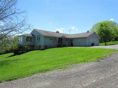 Erie County Single Family Home A-Active: 8229 Heim Drive