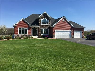 Orchard Park Single Family Home For Sale: 6180 Seufert Road