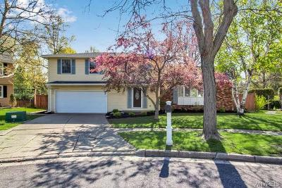 Erie County Single Family Home A-Active: 101 Molnar Drive