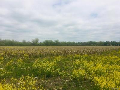 Niagara Falls Residential Lots & Land A-Active: Miller Road East