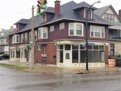 Erie County Multi Family 2-4 A-Active: 208 East Delavan Avenue