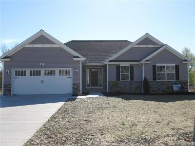 Grand Island Single Family Home A-Active: 63 Castlewood Court