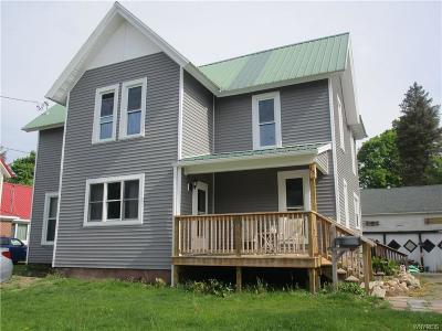 Springville Single Family Home For Sale: 45 Park Street