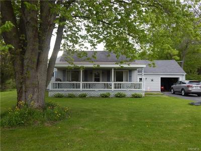 Genesee County Single Family Home A-Active: 8752 Donahue Road