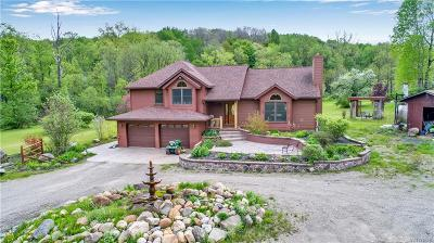 Orleans County, Monroe County, Niagara County, Erie County Single Family Home A-Active: 9443 East Holland Road