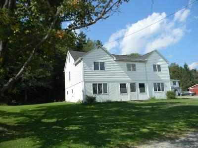 Cattaraugus County, McKean County, McKean-PA County Commercial For Sale: 6050-6062 Ashford Hollow Road