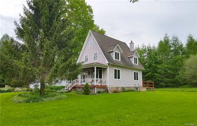 Ellicottville Single Family Home A-Active: 7278 Windsor Road