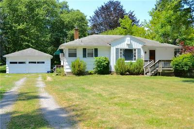 Erie County Single Family Home For Sale: 3598 East River Road