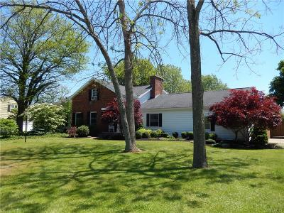 Hamburg Single Family Home For Sale: 6013 Old Lake Shore Road
