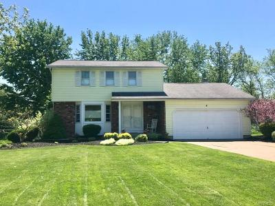 Grand Island Single Family Home A-Active: 4 Beaver Lane