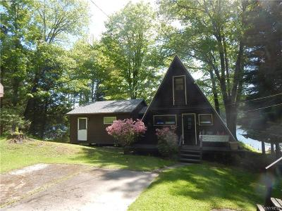 Allegany County, Cattaraugus County Single Family Home A-Active: 8316 County Road 49