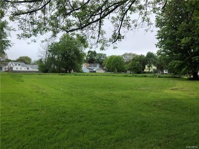 North Tonawanda Residential Lots & Land A-Active: 81 Northeast Avenue