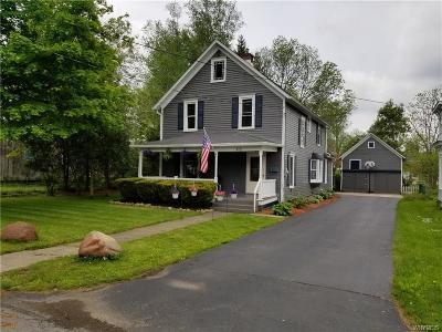 Springville Single Family Home For Sale: 48 Spring Street