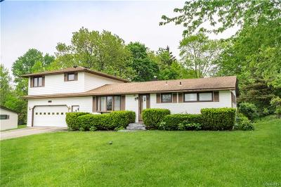 Hamburg Single Family Home A-Active: 5477 Sterling Road
