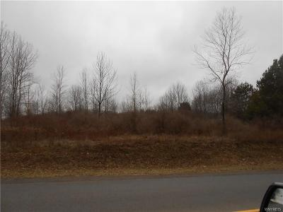 Genesee County Residential Lots & Land A-Active: 8220 Lewiston Road