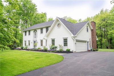 Orchard Park Single Family Home For Sale: 6720 Scherff Road