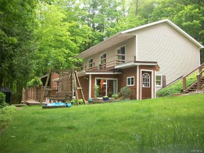 Allegany County, Cattaraugus County Single Family Home A-Active: 8551 Glen Road