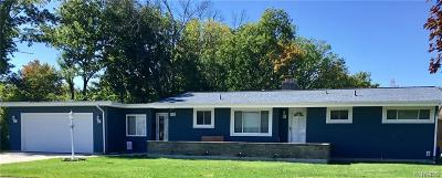 Niagara Falls Single Family Home For Sale: 1076 98th Street