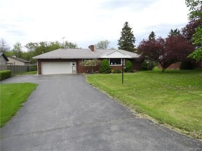 Porter Single Family Home For Sale: 895 Lockport Road