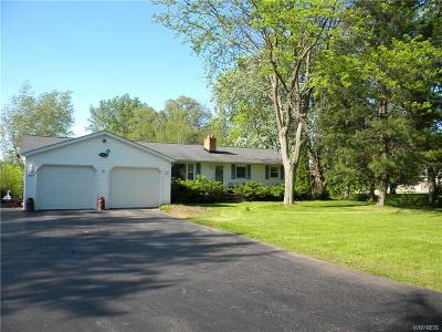 Single Family Home For Sale: 3455 Youngstown Lockport Road