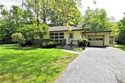 Genesee County Single Family Home For Sale: 10813 Alleghany Road