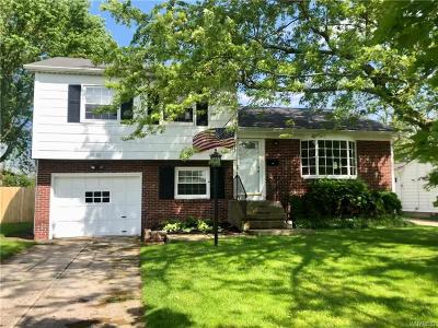 Grand Island Single Family Home A-Active: 1055 Carter Drive