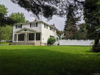 West Seneca Single Family Home For Sale: 273 Reserve Road