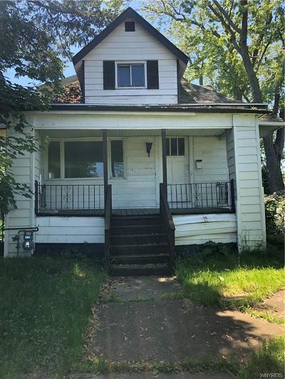 Buffalo Single Family Home For Sale: 1253 E Delavan Avenue