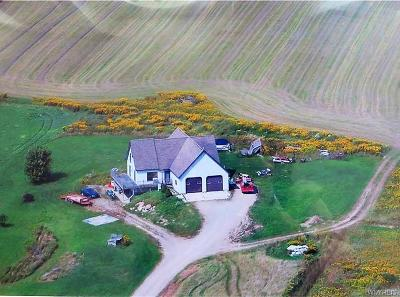 Cattaraugus County Single Family Home For Sale: 1824 Edmunds Road