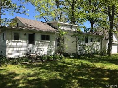 Porter Single Family Home For Sale: 991 Lake Road