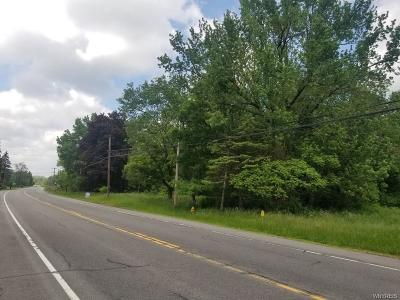 Erie County Residential Lots & Land A-Active: 1532 Olean Road