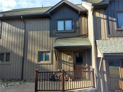 Ellicottville Single Family Home For Sale: 28 Plum Ridge