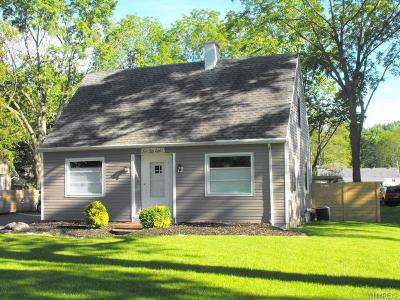 Lewiston Single Family Home For Sale: 668 Ridge Road