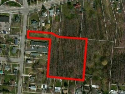 Niagara County Residential Lots & Land A-Active: 412 3rd Street