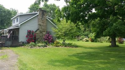 Allegany County, Cattaraugus County Single Family Home A-Active: 3927 Old State Road