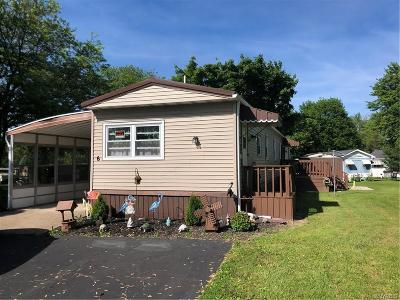 Orleans County Single Family Home A-Active: 6 Lakewood Village