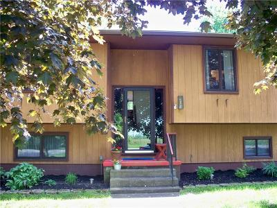 Alden Single Family Home A-Active: 11219 Westwood Road