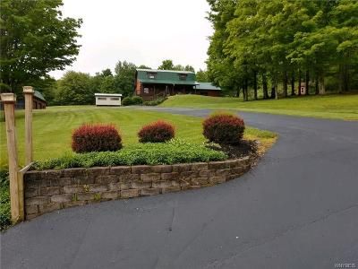 Cattaraugus County Single Family Home For Sale: 10345 42nd Street