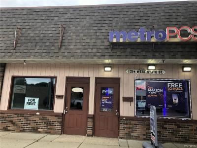 Olean-City NY Commercial For Sale: $225,000