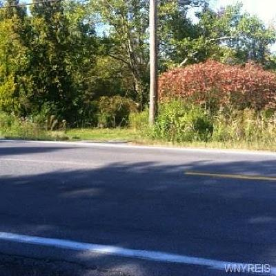 Erie County Residential Lots & Land A-Active: 4876 William Street