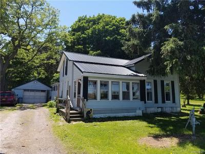 Orleans County Single Family Home A-Active: 12252 Porter Road