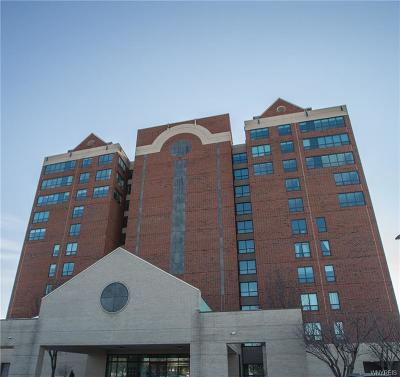 Buffalo Condo/Townhouse For Sale: 607 Admirals Walk Circle