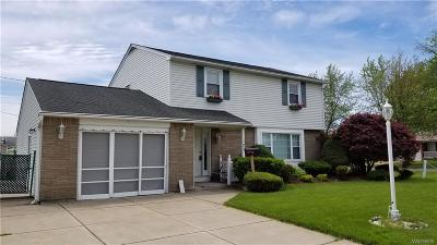 Cheektowaga Single Family Home A-Active: 177 Zoerb Avenue
