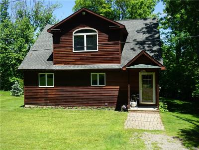 Allegany County, Cattaraugus County Single Family Home A-Active: 8666 County Road 49