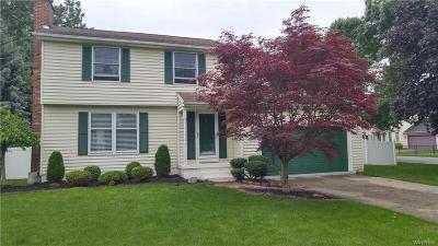 Amherst NY Single Family Home A-Active: $204,900