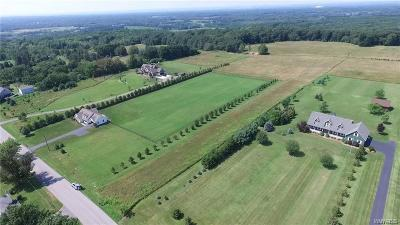 Erie County Residential Lots & Land A-Active: Vl Seufert Road