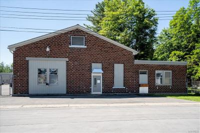 Aurora NY Commercial For Sale: $549,900