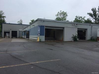 West Seneca NY Commercial For Sale: $769,000