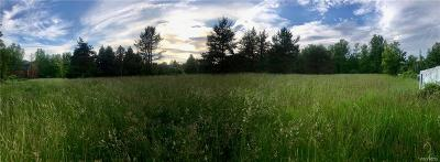 Orleans County Residential Lots & Land A-Active: 00 East Lee Road
